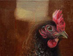 Chicken Study 2