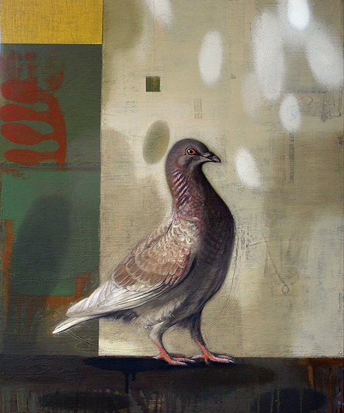 Pigeon Emperor email