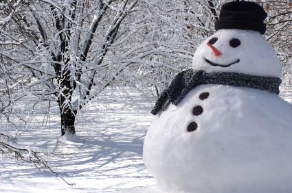 Snowman55