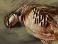 Painting_partridge_detail